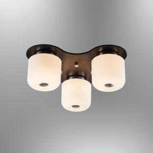 Stropne lampe